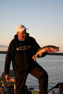 Ron Anlauf with a fine fall walleye