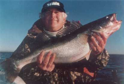 Gary Engberg with a huge  Lake Erie  mid winter walleye