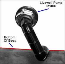 Survivior Livewelll Intake System Get Water on the Run