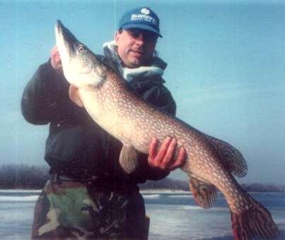 John Kolinski with a huge norethern pike